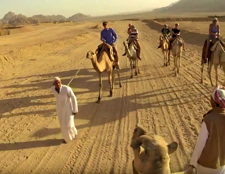 Sharm El Sheikh camel ride