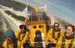 SEA SAFARI OR A WET WEEKEND IN CARDIFF